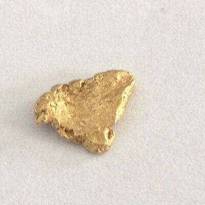 """''0.497 Grams'' """"very Clean Natural Alaska Placer Gold Nugget"""