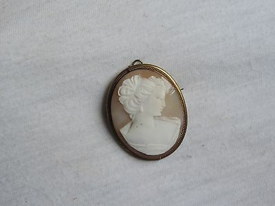 Vintage Cameo Brooch Pin Jewelry Shell Carved (zz046)