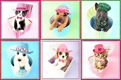 Assorted Pack of 6 Cats & Dogs Birthday Cards Mixed Greetings Card Bundles