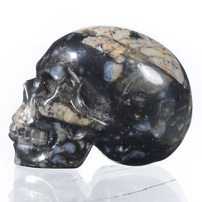 "1.54"" Natural Llanlite Hand Carved Skull/Head,Reiki Healing#24A92"