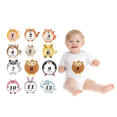 Lovely Animal Baby 1-12 Monthly Milestone Sticker Baby Shower Photo Props 2017