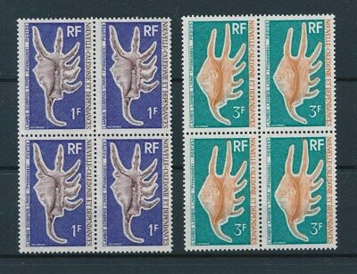 [96492] New Caledonia 1972 Shells good set in blocks of 4 Very Fine MNH stamps