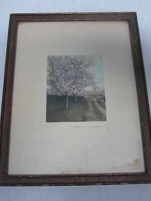 Signed Wallace Nutting Stone Wall Flowering Trees Hand Tinted Framed Photograph