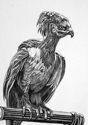 ORIGINAL ACEO sketch card HARRY POTTER - FAWKES the PHEONIX