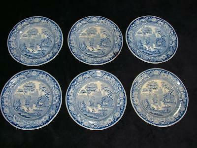 "6 x 10"" EARLY 1800's BLUE & WHITE ""WILD ROSE"" CHINA DINNER PLATES"