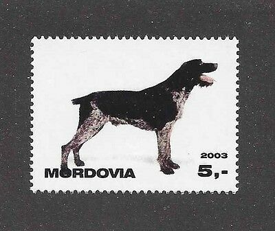 Dog Photo Body Postage Stamp GERMAN WIREHAIRED POINTER Mordovia 2003 MNH