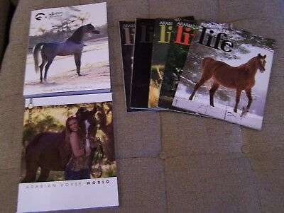 NEW 2017 Arabian Horse Magazines - Lot of 7 Collectable Reference