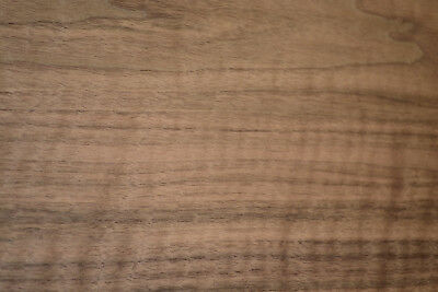 Walnut Raw Wood Veneer Sheets  13.5 x 46 inches 1/42nd thick           c8709-6