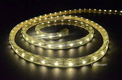 Rope Light Perfect for Home and Patio Decor Flexible Flat Warm White 30 Feet