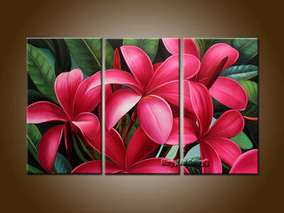 Framed Large Modern Hand-painted Egg Red Flower OIL Painting on Canvas Wall Art