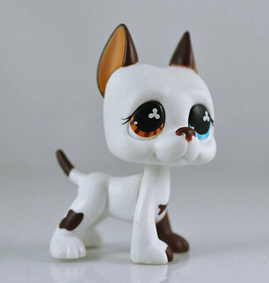 Littlest Pet DANE Blue Eye Brown Dog Child Girl Figure Toy Loose Cute LPS993