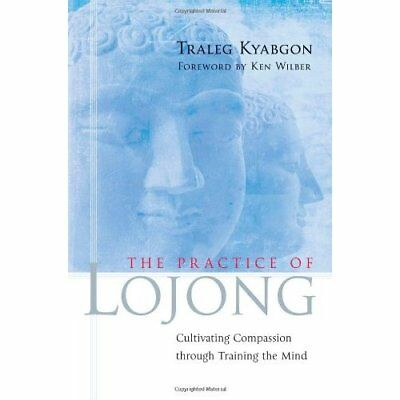 The Practice of Lojong: Cultivating Compassion Through  - Paperback NEW Kyabgon,