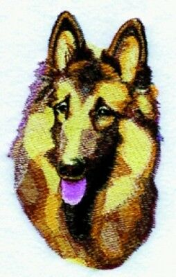 Large Embroidered Zippered Tote - Belgian Tervuren BT3602