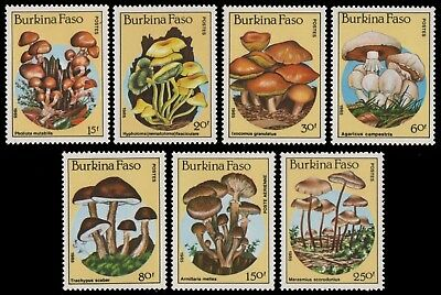 Burkina Faso 1985 - Mi-Nr. 1054-1060 ** - MNH - Pilze / Mushrooms
