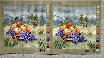 "2  identical Printed Tapestry Canvas fruit and mountain scene  6x8"" design area"