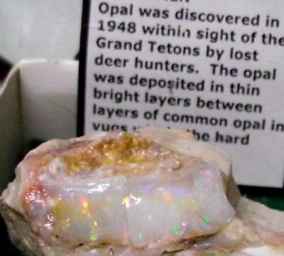 Rare Opal Rough with Great Colors from Spencer, Idaho, USA Display Specimen