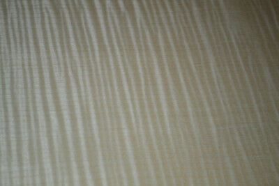 Curly Maple Raw Wood Veneer Sheets at 10 x 22 inches 1/42nd             d8709-46