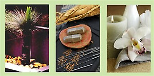 $90 VOUCHER FIRST Consultation & Treatment Acupuncture CANNON HILL 4170 QLD