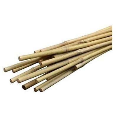 Bond Manufacturing SMG12034 6 ft. Heavy Duty Bamboo Stakes, 6 Pack