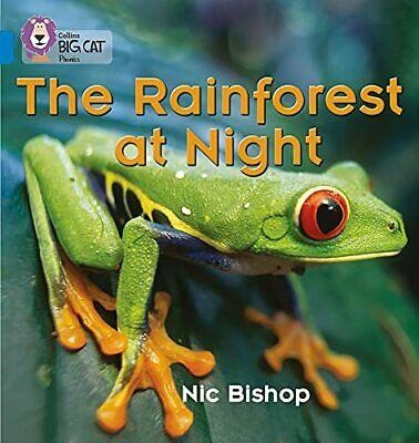 The Rainforest at Night: Band 04/Blue (Collins B... by Collins Big Cat Paperback