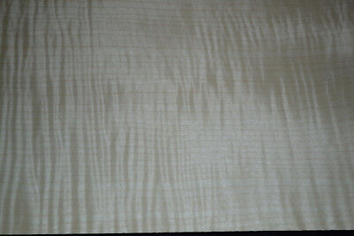 Curly Maple Raw Wood Veneer Sheets 7.5 x 21 inches 1/42nd Blemished      d8711-1