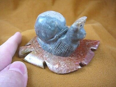 (y-BIR-SNAI-400) gray racer Snail on red leaf GEM STONE carving SOAPSTONE Peru