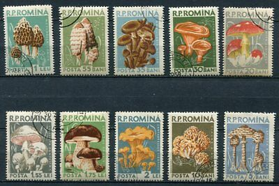 Romania 1958 Mushrooms Set Of 10 Stamps Complete!