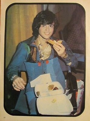 Donny Osmond, Full Page Vintage Pinup, The Osmonds Brothers