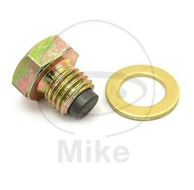 BMW R 1150 GS Adventure  2005 ( CC) - Magnetic Oil Drain Plug with Washer