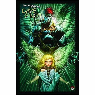 Top Cow's Best Of Dave Finch: vol. 1 - Paperback NEW Finch, David 2006-09-28