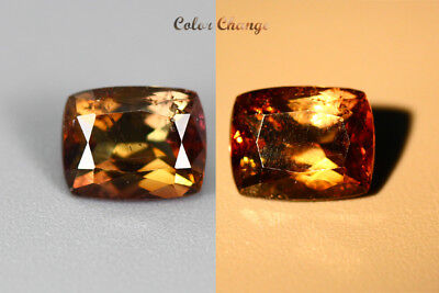 1.640 Ct  Earth Mined Unique Dazzling 100% Natural Dancing' Color Change Axinite