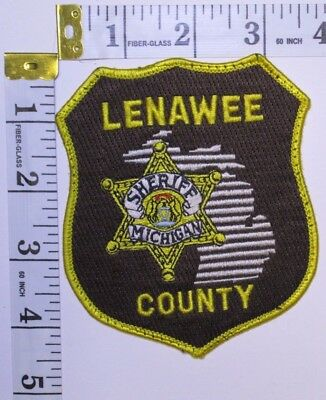 Lenawee County Michigan Sheriffs Department Shoulder Patch