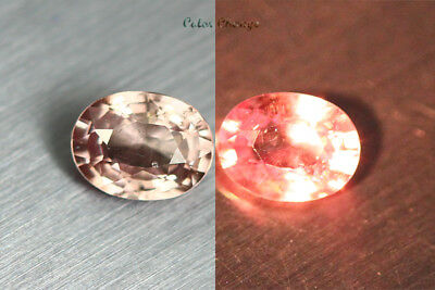 0.545 Ct Rare Natural From Earth Mined *color Change Malaya Garnet* Aaa+ Gem~!!!