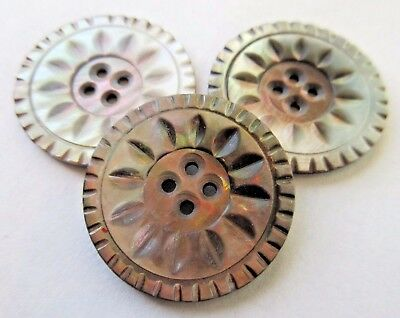 Fabulous Lot of 3 Matching Antique~ Vtg Victorian Carved MOP Shell BUTTONS LARGE