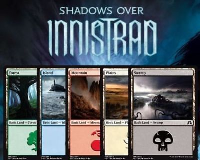 MTG Magic the Gathering Shadows over Innistrad FOIL Basic Land x15 (1 of each)