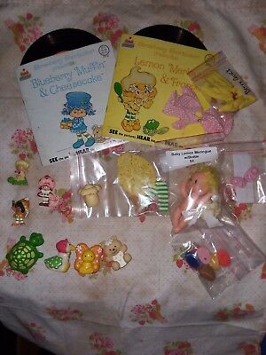 Lot of Strawberry Shortcake Vintage Minis Pets Cloth Books Records Shoes Clothes