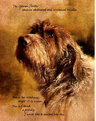 German Wirehaired Pointer Dog Print - Poortvliet