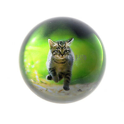 80mm Crystal Cat Pattern Half Ball Paperweight Figurines Wedding Decor Lady Gift