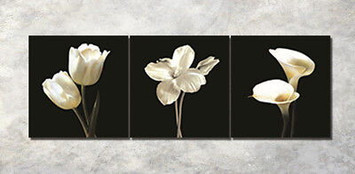 """3Parts Home Wall Decor 16x16"""" Art Printed Painting on Canvas Blooming tulips 983"""