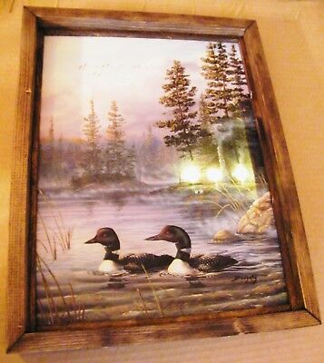 Framed LOON cabin  lighted LED Lamp canvas art print lodge picture decor sign
