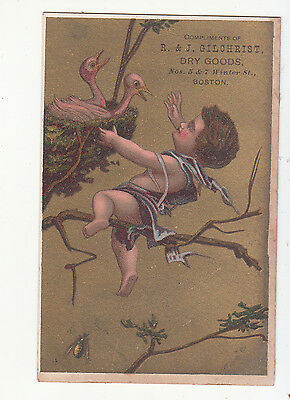 R & J Gilchrist Dry Goods Boston MA Baby Birds in Nest Victorian Card  c1880s