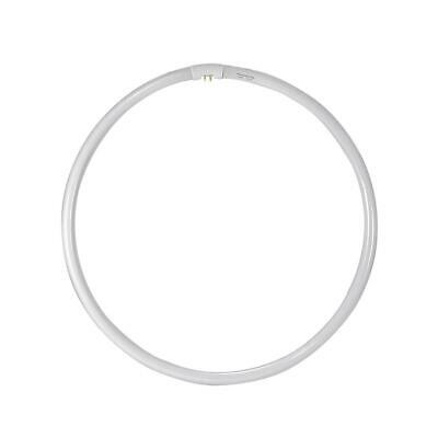 """Flashpoint 13"""" Replacement 50w Ringlight Bulb for Fluorescent Ring Light"""