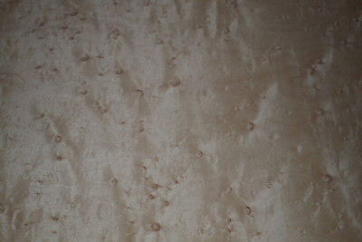 Birdseye Maple Raw Wood Veneer Sheets 9 x 50 inches  1/42nd thick        d8713-1