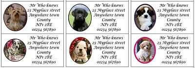 48 Large Personalised Return Address Thank you labels -puppies kittens dogs cats