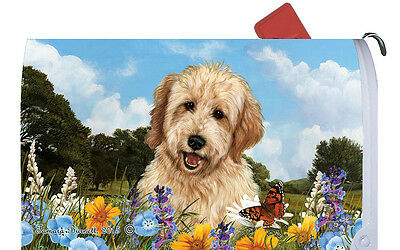 Mail Box Cover - Goldendoodle 56268