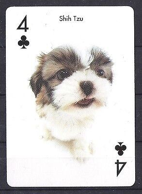 One Single Dog Optical Art Photo Playing Card CHINESE SHIH TZU Puppy Artlist