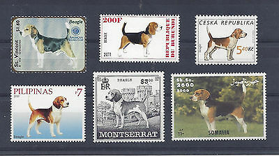 Dog Art & Photo Portrait Postage Stamp Collection SHOW BEAGLE 6 Diffferent MNH