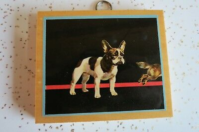 Vintage Small Black and White French Bulldog Picture Print on Wood