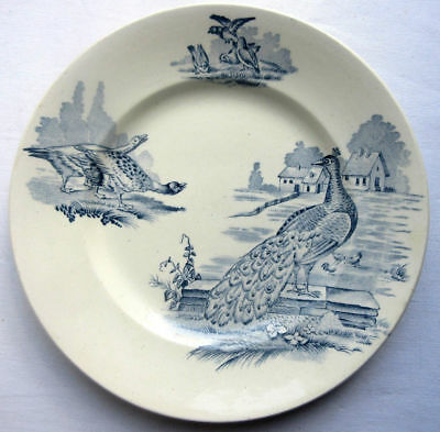 RARE French Majolica blue Plate Sarreguemines signed RUSTIC: the peacocks