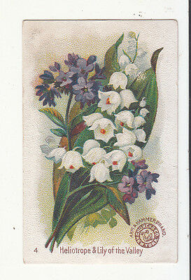 Arm & Hammer Soda Beautiful Flowers No. 4 Heliotrope Lily of Valley Card c1880s